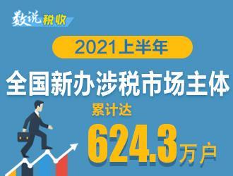 2021上半年新办涉税市场主体有哪些亮点?税收大数据为你揭秘